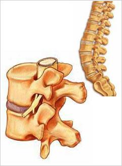 tratarea coloanei vertebrale și a anastaziei articulațiilor semenova unguent de încălzire pentru prețurile mușchilor și articulațiilor