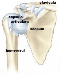 durere în articulația umărului brațului drept noaptea