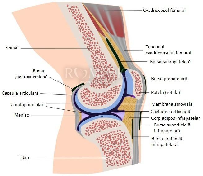 tratamentul fracturilor articulației genunchiului durere ascuțită când aplecați genunchiul