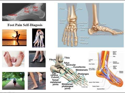 medicament antler pentru articulații unguent pentru tratamentul artrozei articulației șoldului