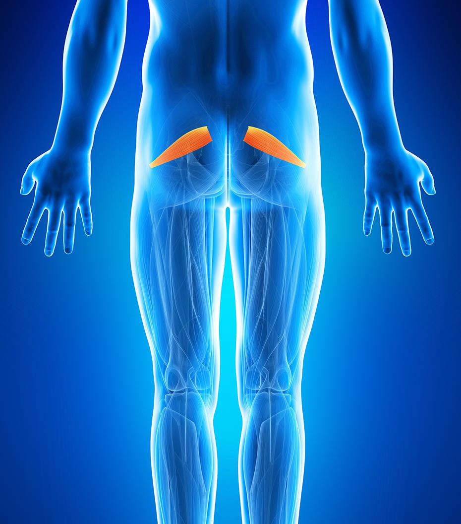 durere în articulația șoldului fesei și piciorului articulațiilor și varicelor