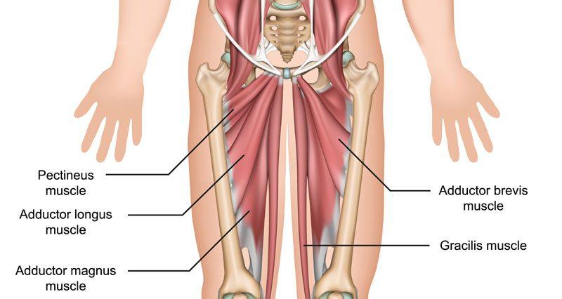 retete pentru tratamentul artrozei