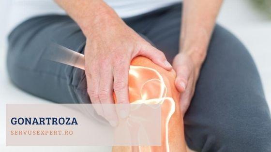 în care bolile bolii bolnave afectează articulațiile umflarea lângă articulație