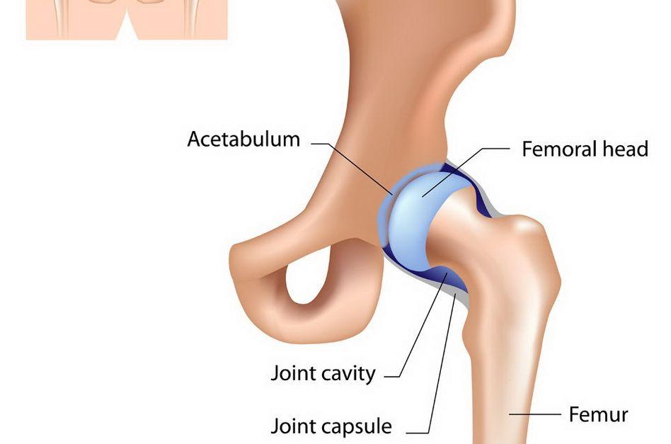durere în articulația șoldului piciorului