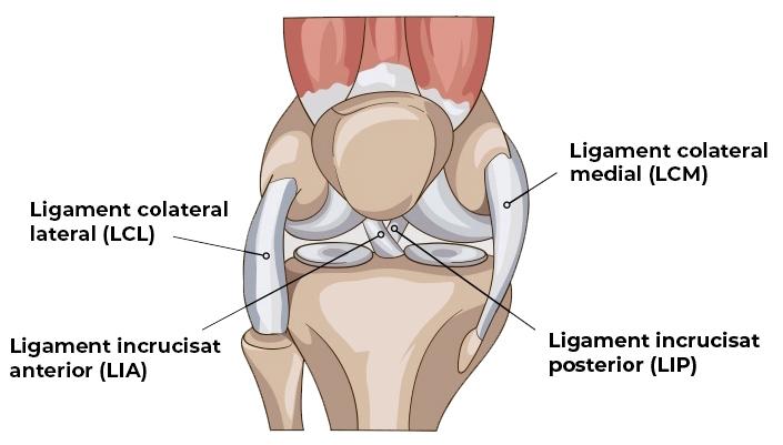 plata pentru vătămarea genunchiului pastile de tratament dureri articulare severe