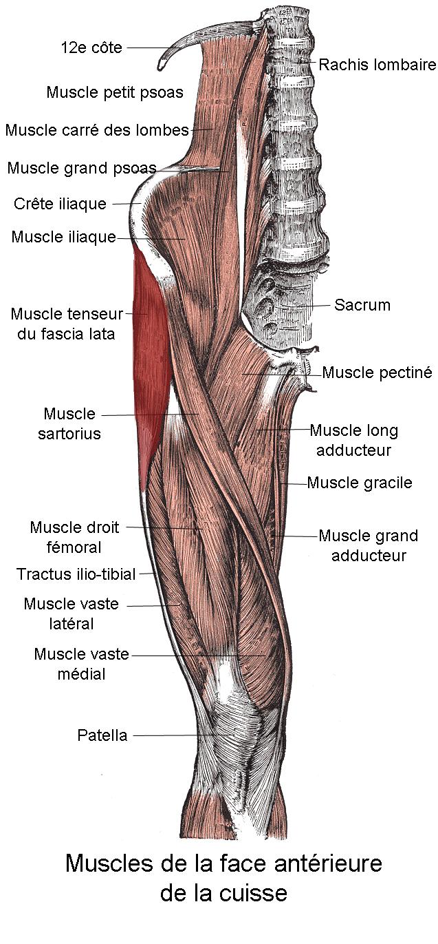 roseata la incheietura mainii noi metode de tratare a artrozei genunchiului