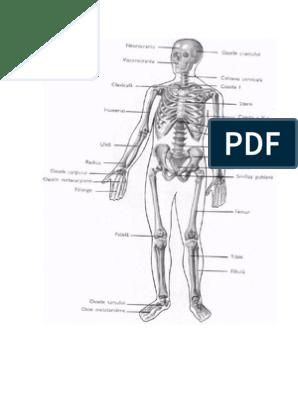menovazină durere articulară umflarea articulației piciorului stâng