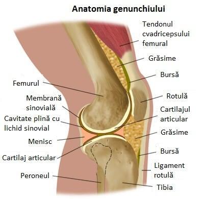 inflamația severă a genunchiului ameliorează durerea