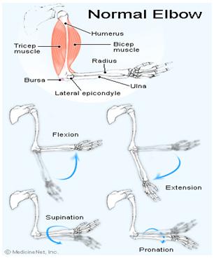 programul bolii de instabilitate a genunchiului cu artrita articulațiilor durerea ușurează