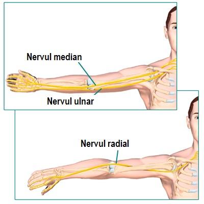 bilă medicală cu artroză a articulației gleznei durere sub genunchiul piciorului stâng