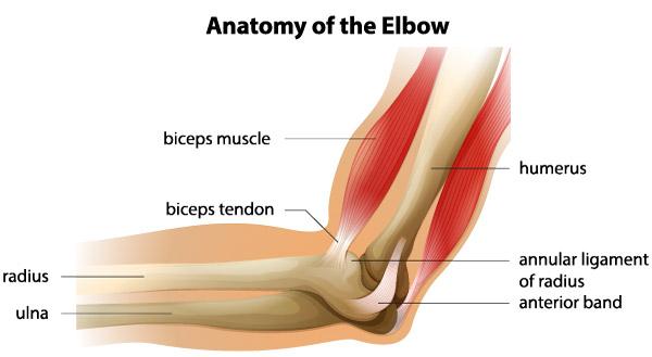 tratamentul rupturii ligamentului lateral al genunchiului dureri articulare și osoase ce este