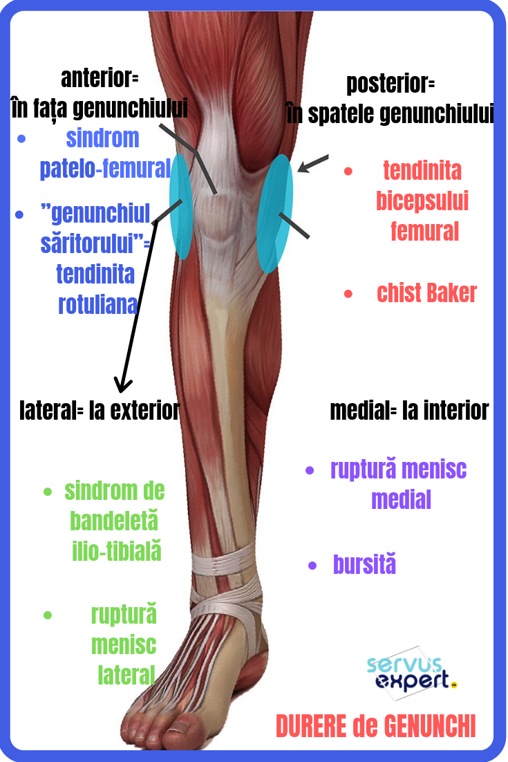durere severă în articulația gleznei  fără răni