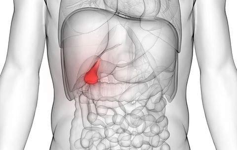 vitamine pentru refacerea cartilajului în articulații de ce cu dureri articulare